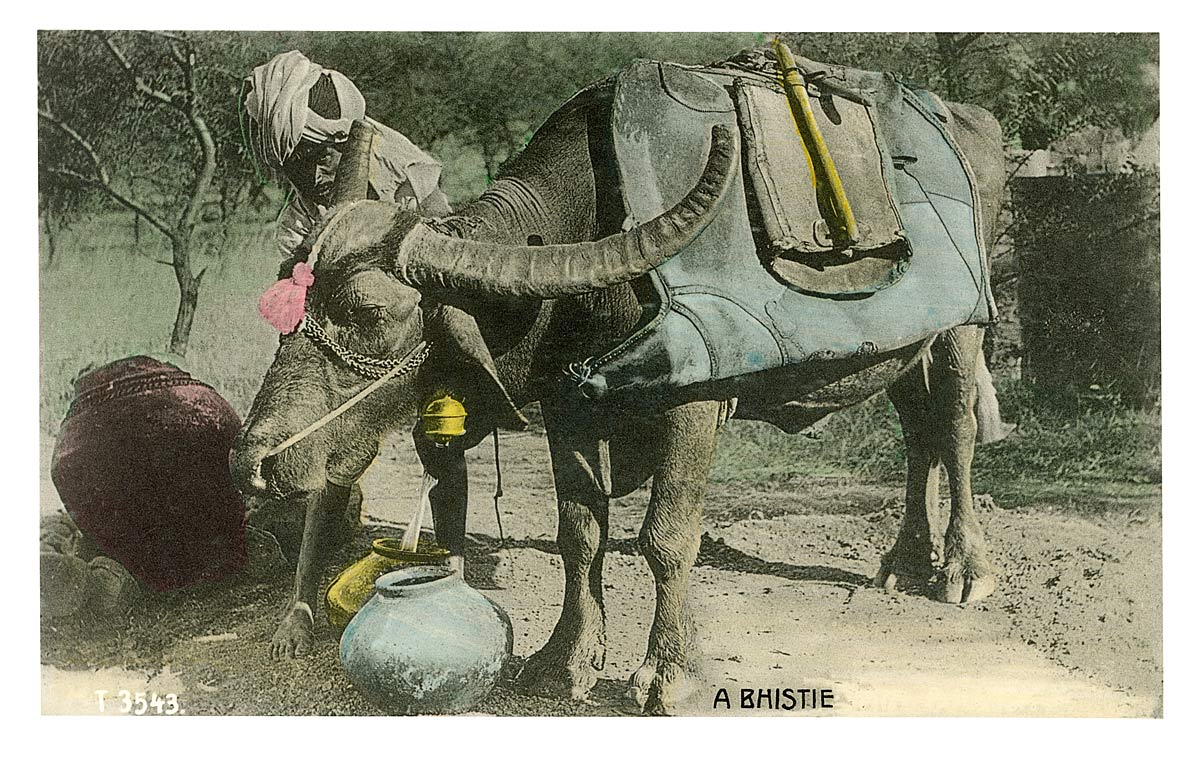 A Bhistee [Watercarrier]