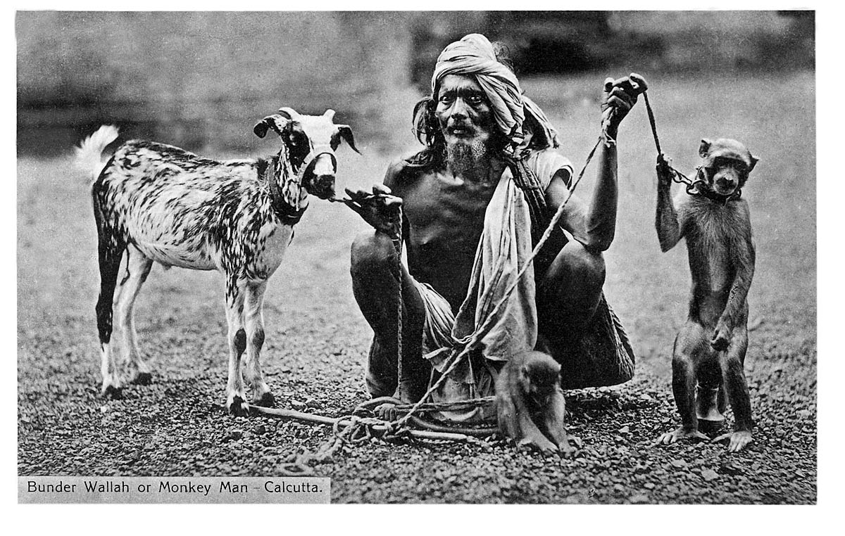 Bunder Wallah or Monkey Man