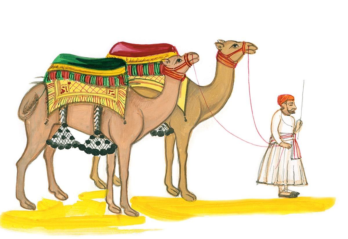 Camel Driver [handwritten]