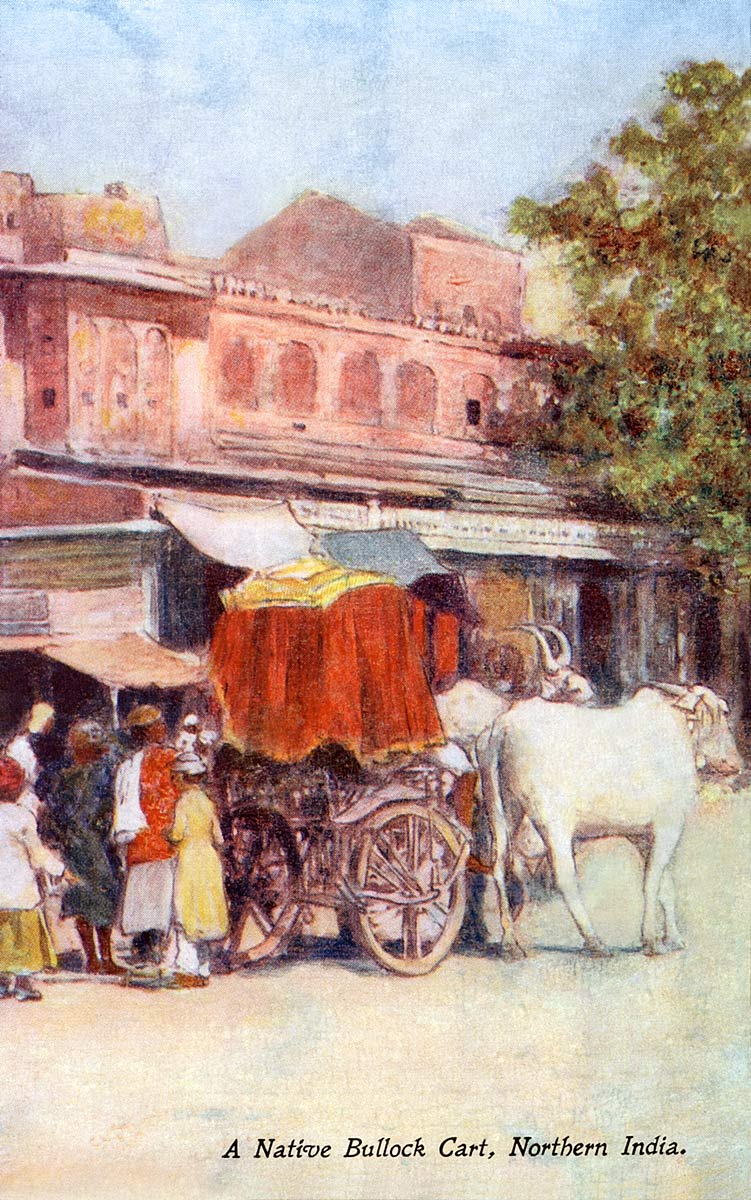 A Native Bullock Cart, Northern India