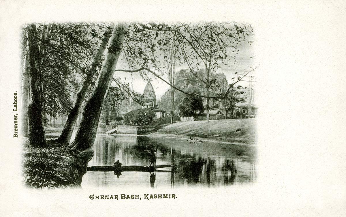 Chenar Bagh, Kashmir
