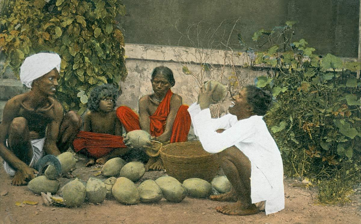 A Coconut Seller, Madras