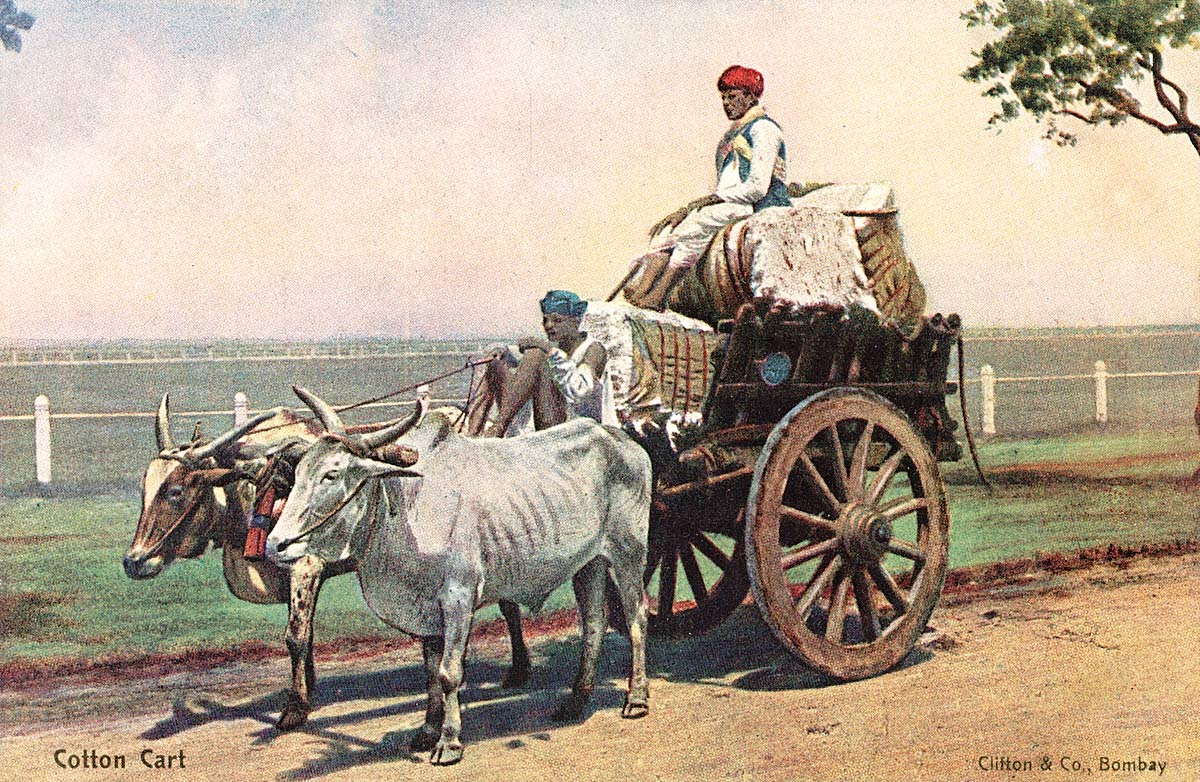 Cotton Cart