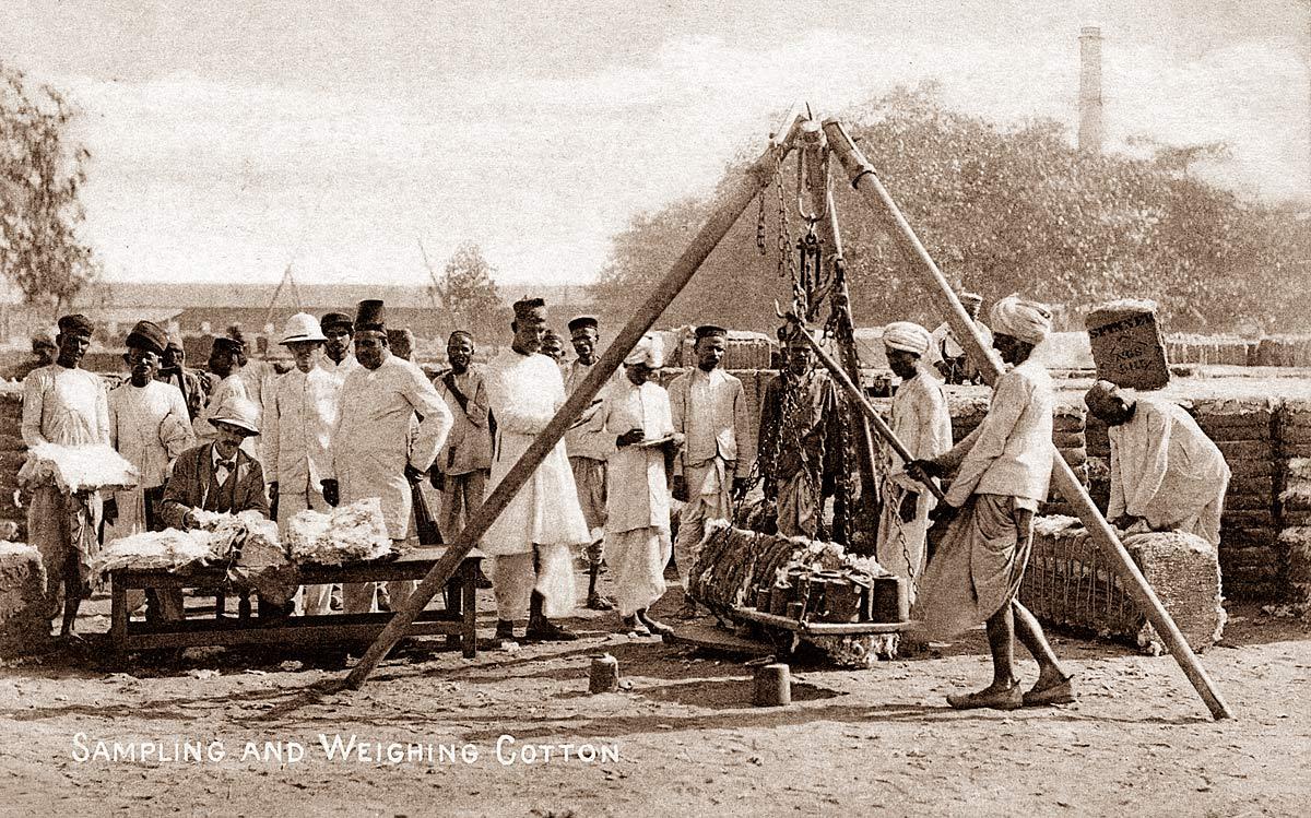 Sampling and Weighing Cotton