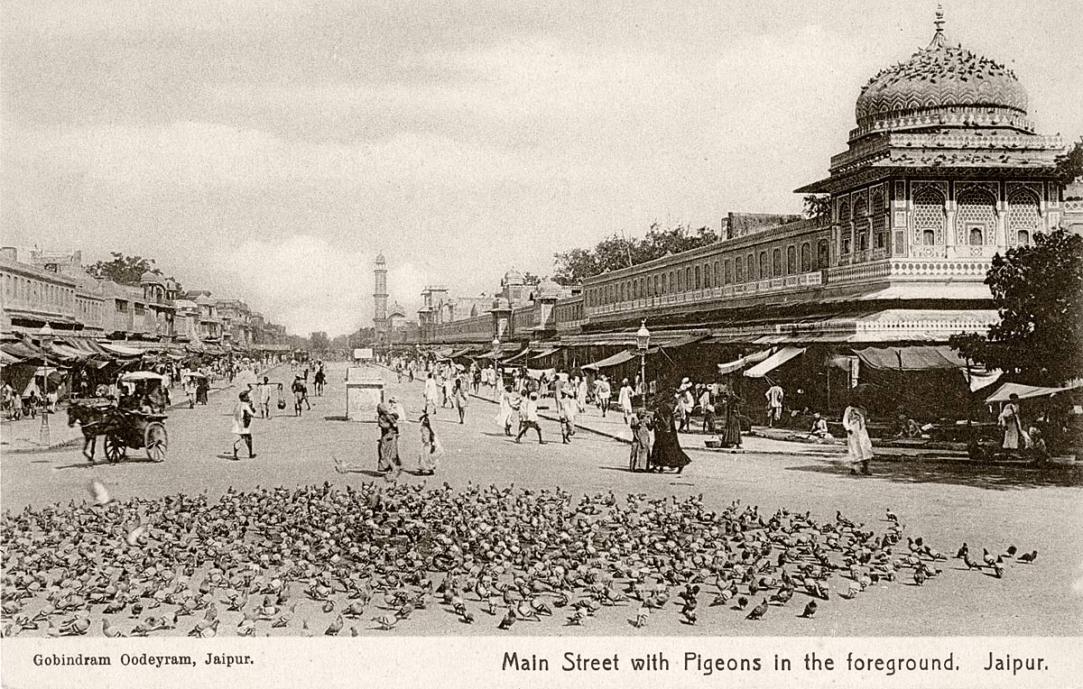 Main Street with Pigeons in the foreground, Jaipur