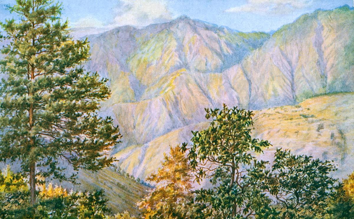Simla. View from Mashobra.