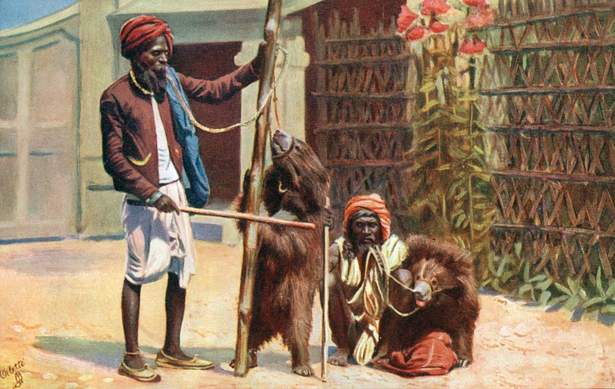 Calcutta, Performing Bears