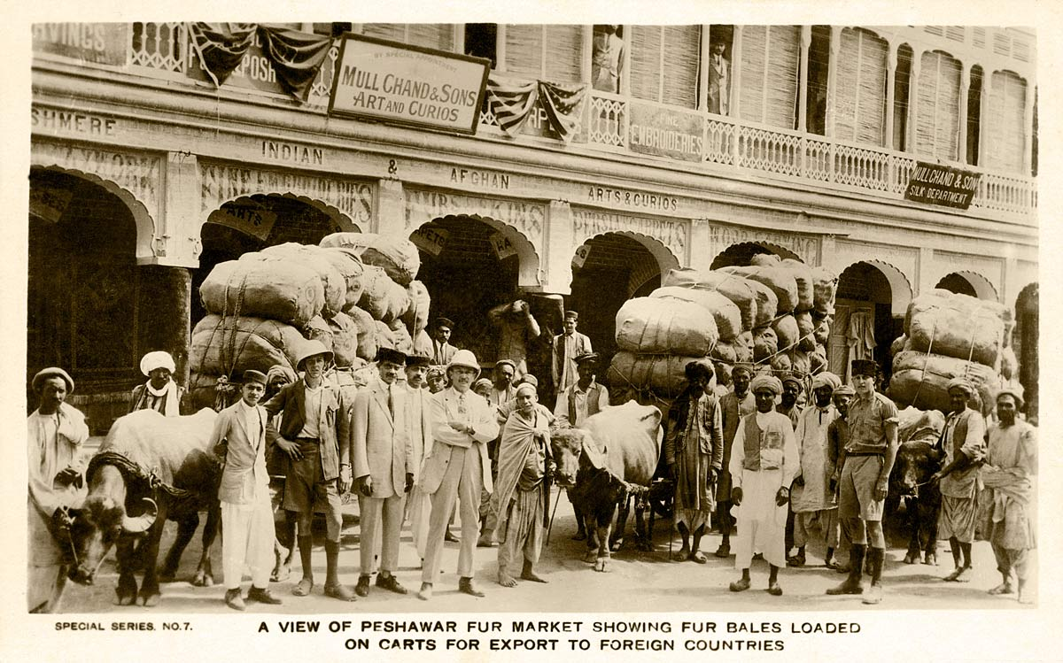 A View of Peshawar Fur market Showing Fur Bales Loaded on Carts for Export to Foreign Countries