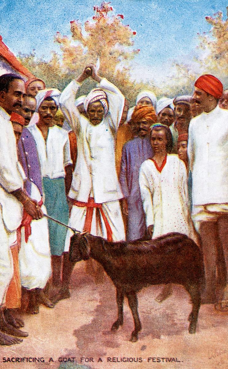 Sacrificing a Goat for a Religious Festival
