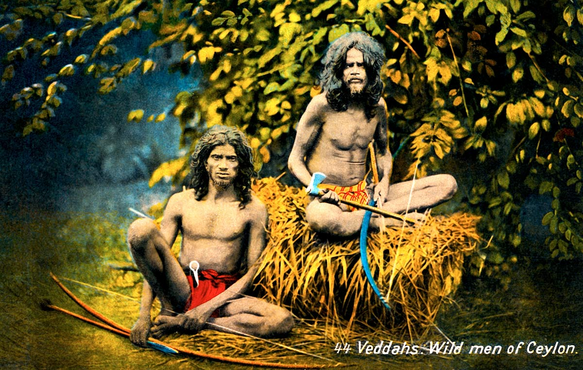 Veddahs. Wild men of Ceylon
