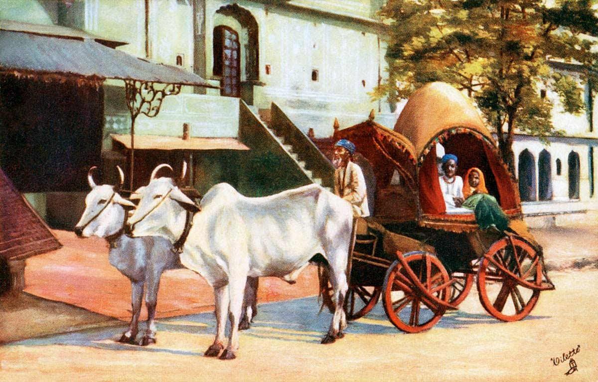 Jeypore Zenana Carriage