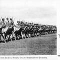 Bikaner Camel Corps, Delhi Coronation Durbar