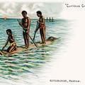 Curious Craft. Catamaran, Madras