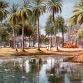 Madras Date Palms