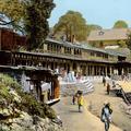 The Market, Kasauli