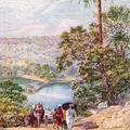 Narsinghgarh, The Lake