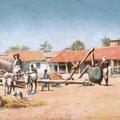 Madras Coconut Oil Mills