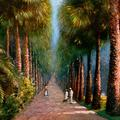 Palm Avenue, Botanical Gardens, Calcutta.